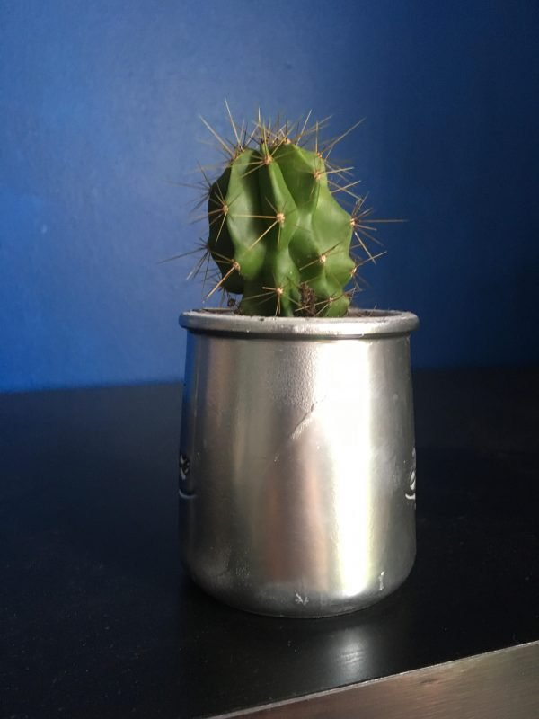 Pots de fleurs, vases, caches pots maison
